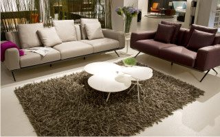 dry carpet cleaning cape town
